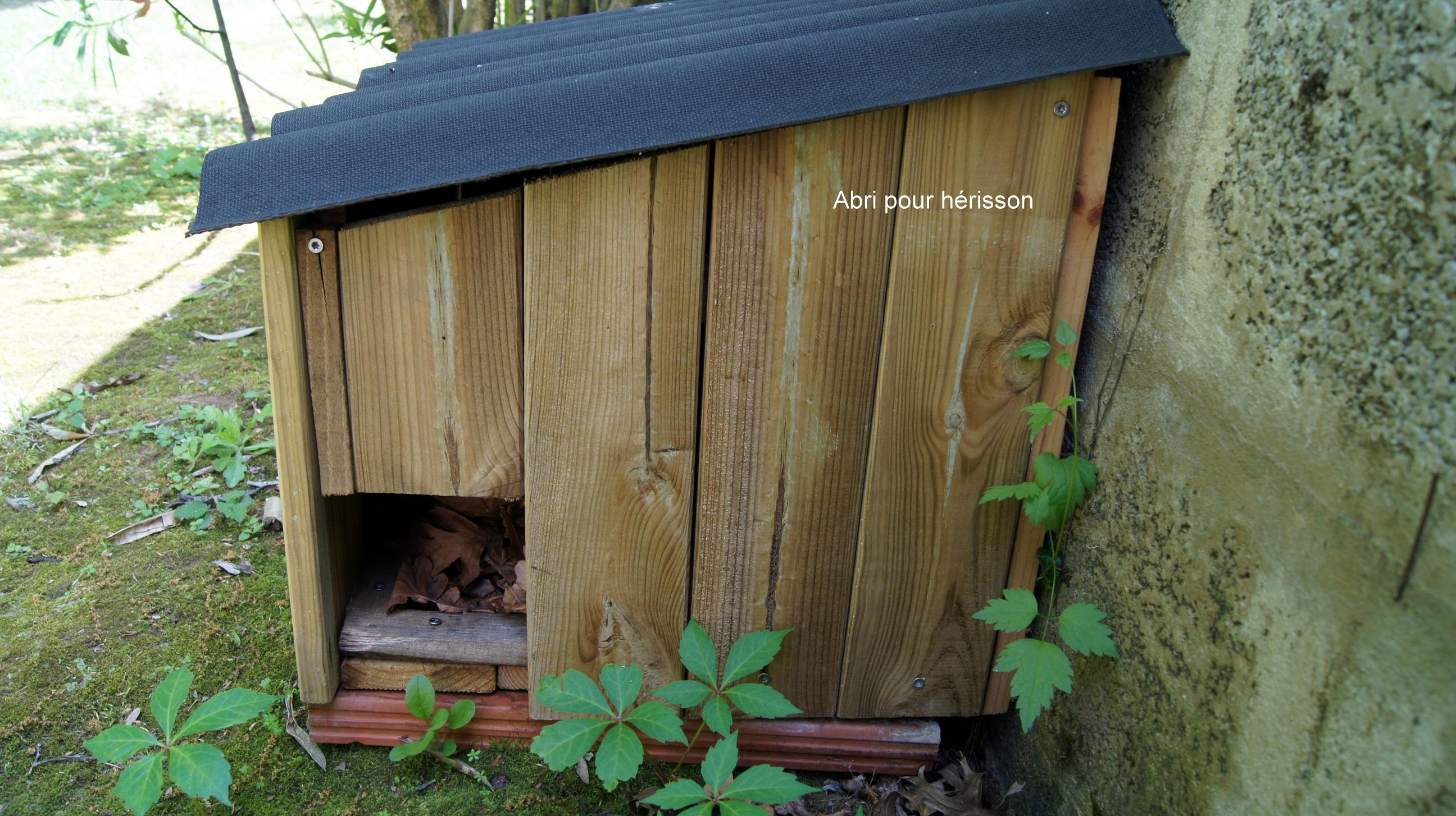 la biodiversit agenda 21. Black Bedroom Furniture Sets. Home Design Ideas