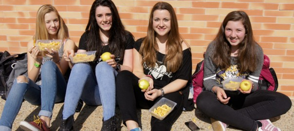 Lycée Bayonne Largenté - Opération Frites - Pommes 2014